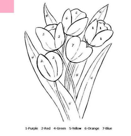 Coloring-Pages-Flower-for-Kids-by-number